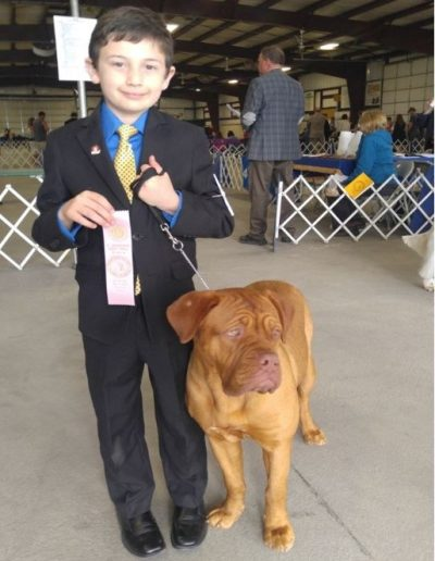 Junior Showing Award #2 Junior for Breed